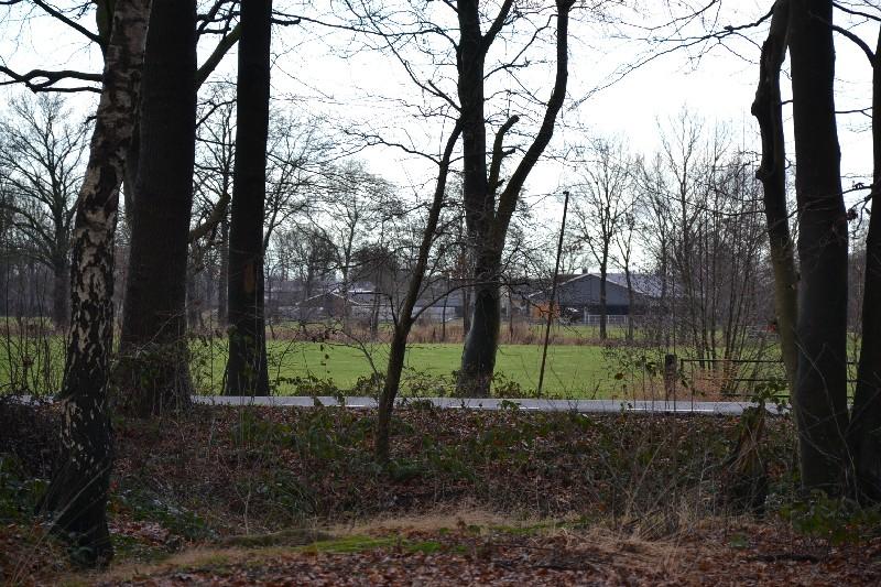 Door de bomen... de zorgboerderij