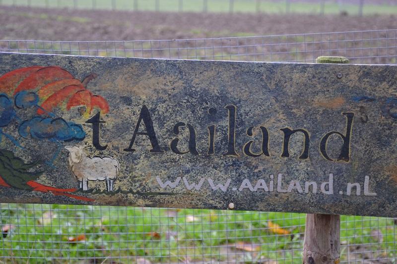 Aailand - Nederhemert zuid