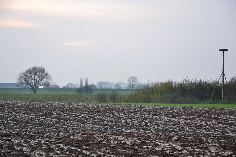 Platteland Bommelerwaard zuidwest - Nederhemert zuid
