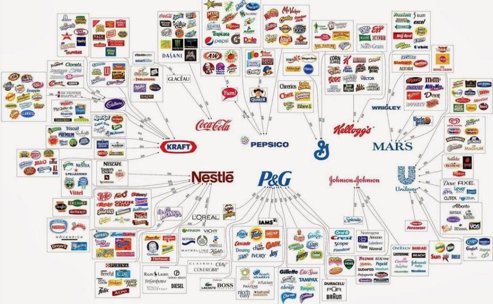 Macht in voedselketen
