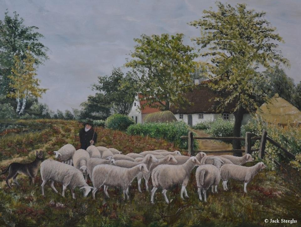 Herder met Schapen - vroedman Schilderij Louis Steeghs 2007