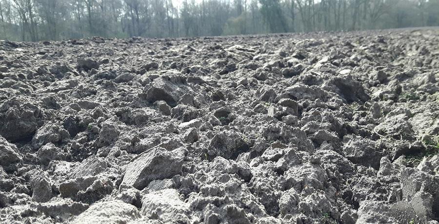 omgeploegde-zandgrond-april